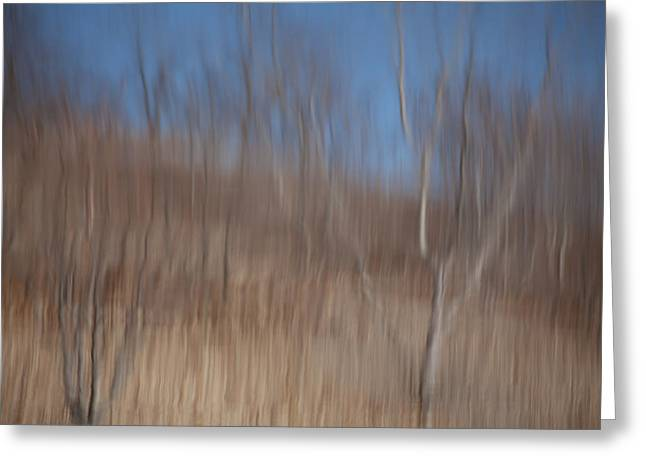 Trees Reflecting In Water Greeting Cards - Weary Reflections Greeting Card by Karol  Livote