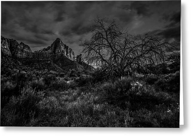 Watchman Greeting Cards - Weather Tree Zion National Park Greeting Card by Scott McGuire