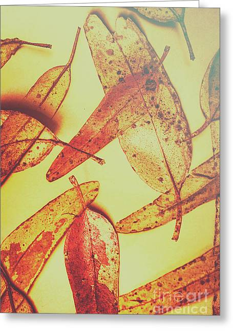 Weathered Autumn Leaves Greeting Card by Jorgo Photography - Wall Art Gallery
