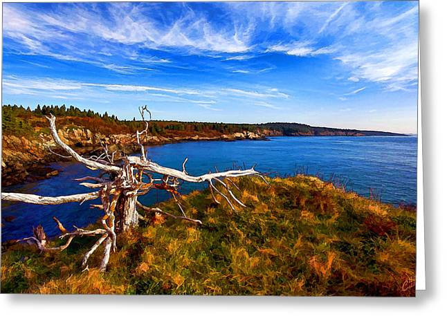 Weathered Coast Greeting Card by Bill Caldwell -        ABeautifulSky Photography