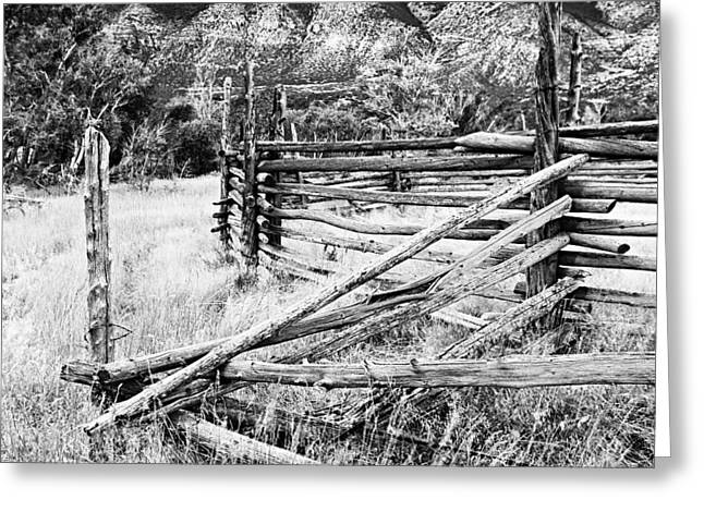 Ewing Greeting Cards - Weathered Fence Greeting Card by Larry Ricker