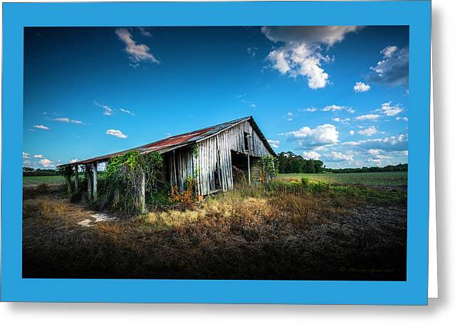 Weathered Greeting Card by Marvin Spates