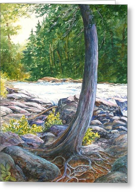 Tree Roots Paintings Greeting Cards - Weathered Roots of Time Greeting Card by Lois Mountz