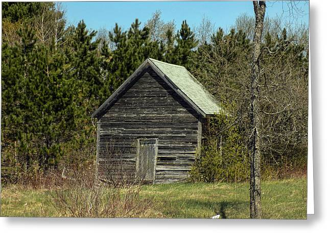 Maine Farms Greeting Cards - Weathered Shed Greeting Card by William Tasker
