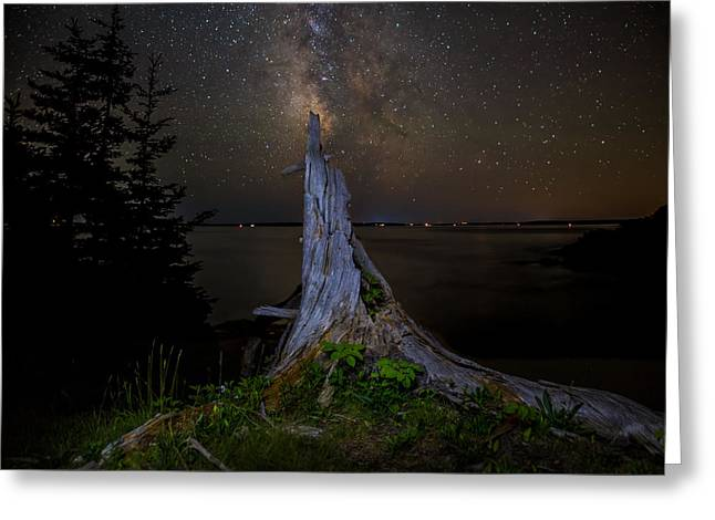 Maine Beach Greeting Cards - Weathered Stump under the stars Greeting Card by Brent L Ander