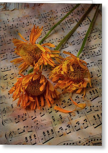 Weathered Sunflowers Greeting Card by Garry Gay