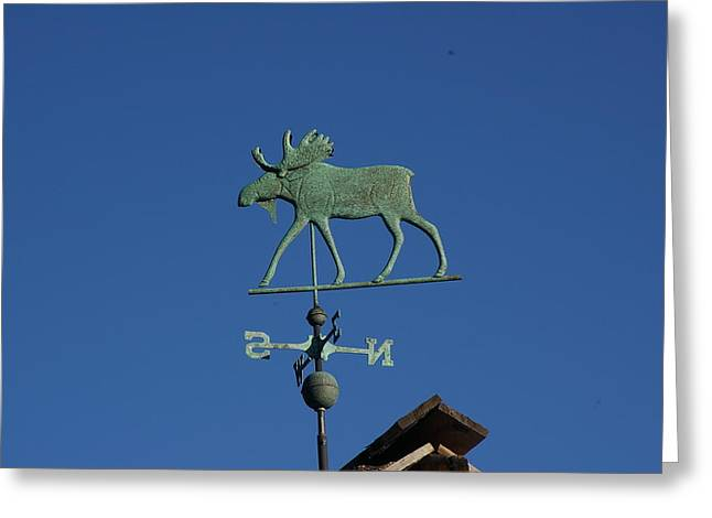 Weathervane Greeting Cards - Weathervane Moose Greeting Card by Cynthia  Cox Cottam