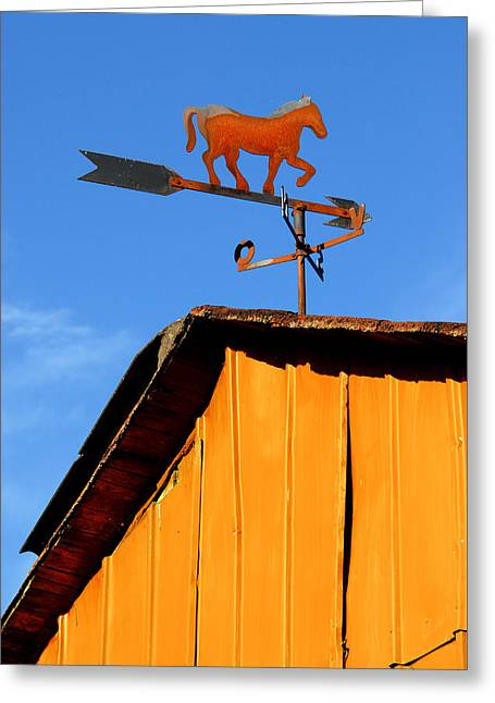 Weathervane Greeting Cards - Weathervane Greeting Card by Robert Lacy