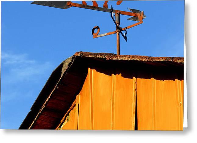 Weathervane Greeting Card by Robert Lacy