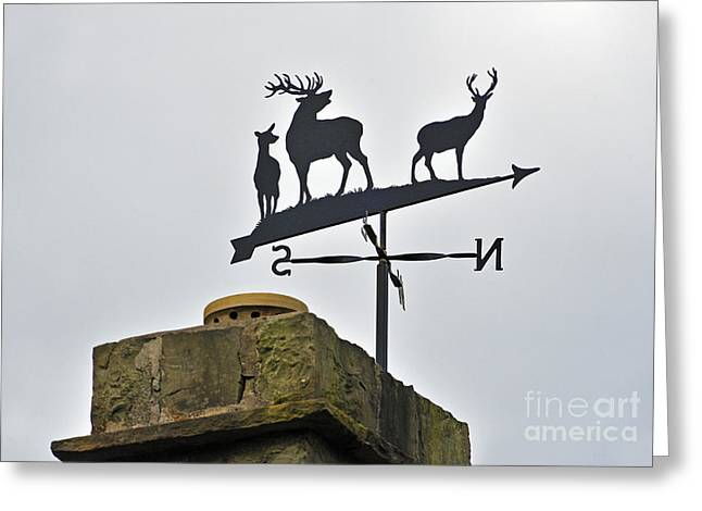 Weathervane Greeting Cards - Weathervane with three deer on chimney. Greeting Card by Stan Pritchard
