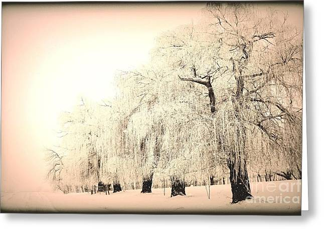 Snow Scenes Greeting Cards - Weeping 3 Greeting Card by Julie Lueders