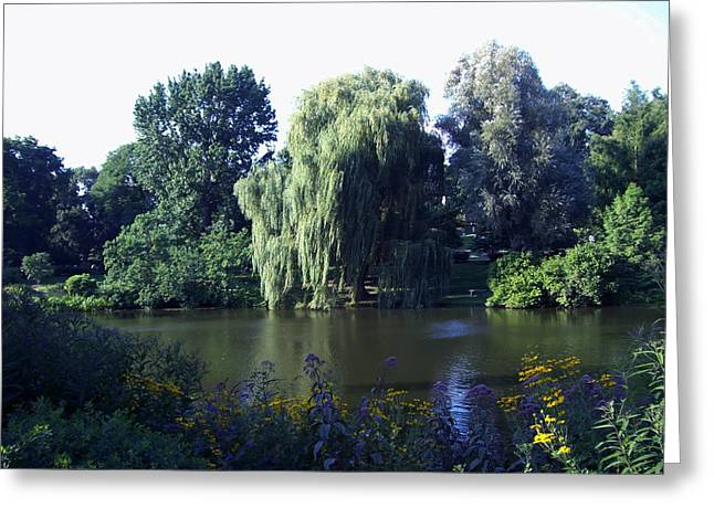 Willow Lake Greeting Cards - Weeping Willow at the Mount Auburn Cemetary in Cambridge MA Greeting Card by Mary Ann Weger