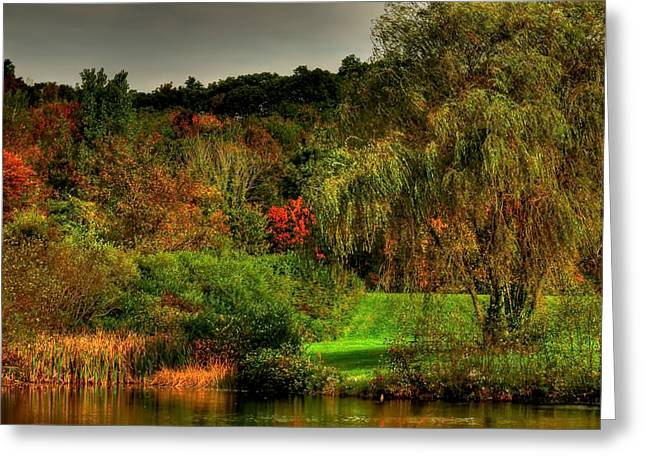 Willow Lake Greeting Cards - Weeping Willow  Greeting Card by Gene Camarco