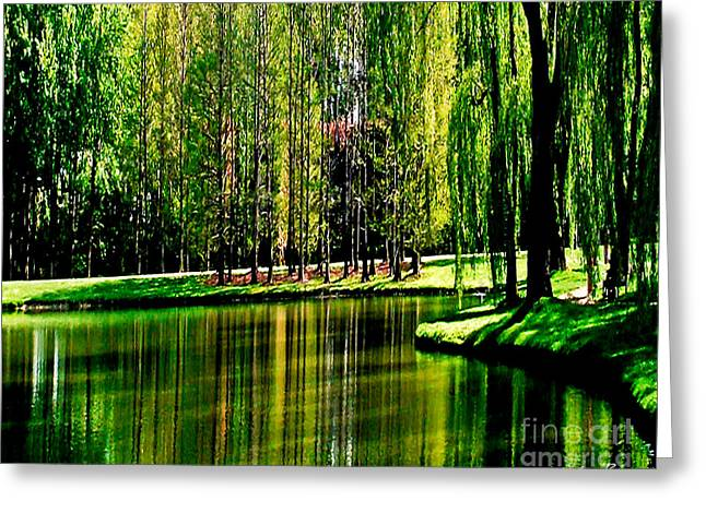 Weeping Willow Tree Reflective Moments Greeting Card by Carol F Austin