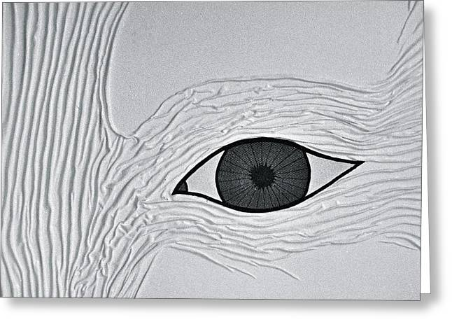 Face Tapestries - Textiles Greeting Cards - Weisheitsauge - Eye of Wisdom Greeting Card by Marie Halter