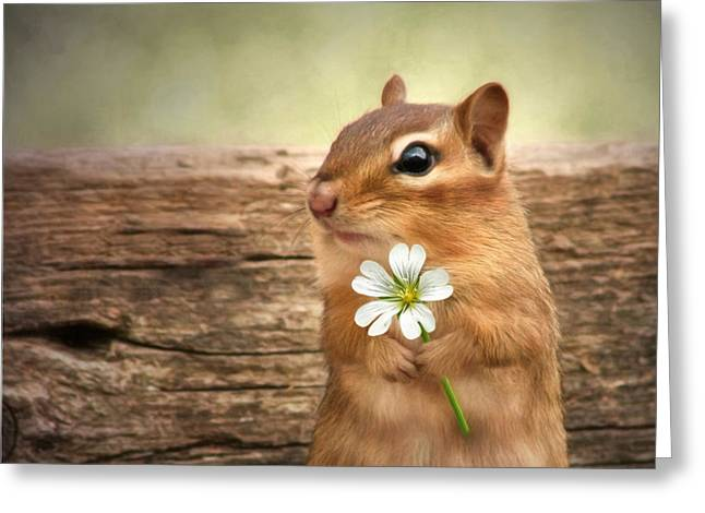 Squirrels Greeting Cards - Welcome Spring Greeting Card by Lori Deiter