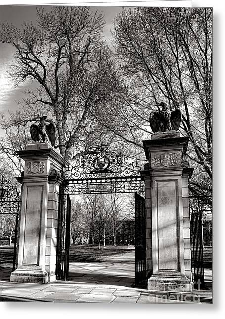 Welcome To Princeton University Greeting Card by Olivier Le Queinec
