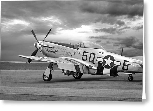 Well Earned Rest P-51 In Black And White Greeting Card by Gill Billington