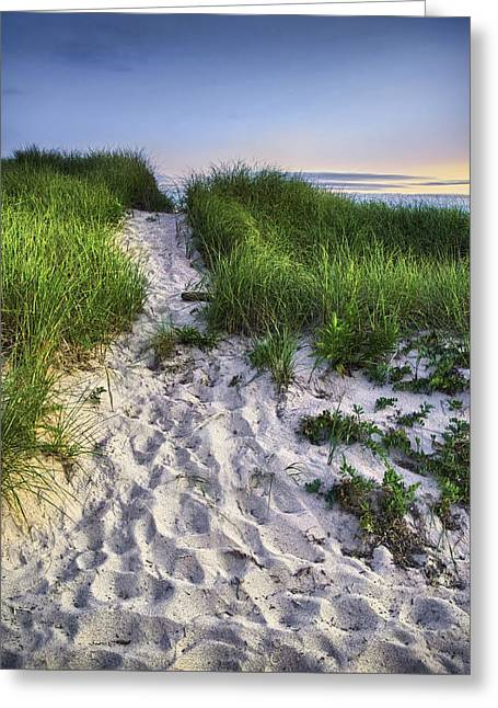 Wellfleet Beach Path Greeting Card by Tammy Wetzel