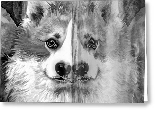 Dog Glass Greeting Cards - Welsh Corgi Ice Mirror Greeting Card by Kathy Kelly