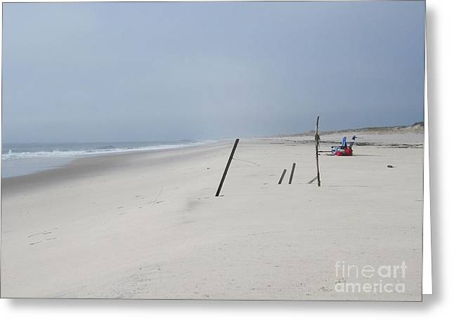 Foggy Beach Greeting Cards - Went for a Walk Greeting Card by Deborah A Andreas