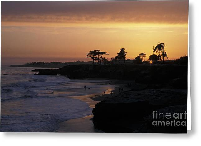 Santa Cruz Greeting Cards - West Cliff at Sunset Greeting Card by Stan and Anne Foster