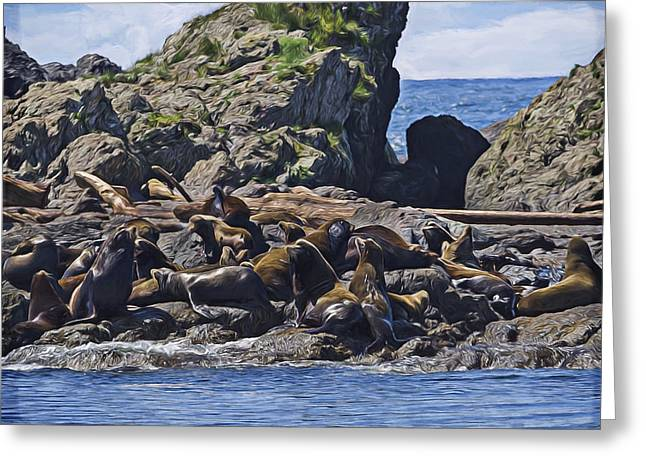 Sea Lions Greeting Cards - West Coast Art - Bathing Beauties Greeting Card by Jordan Blackstone