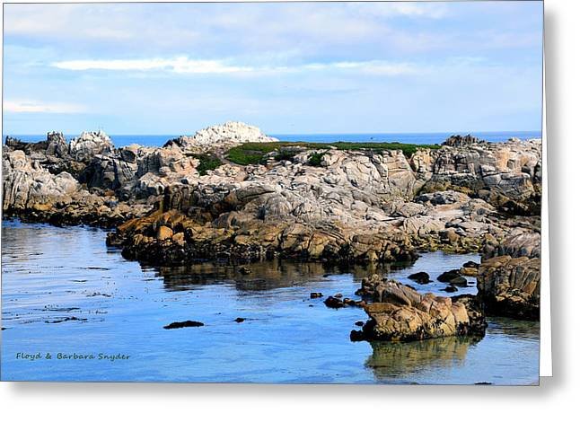 Rocks Greeting Cards - West Coast Seascape Greeting Card by Barbara Snyder