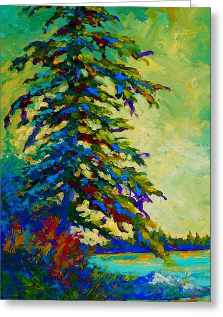 Coastal Trees Greeting Cards - West Coast Sentinel Greeting Card by Marion Rose