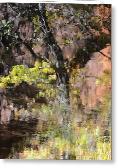 West Fork Greeting Cards - West Fork Reflection on Water Greeting Card by Tamara Becker