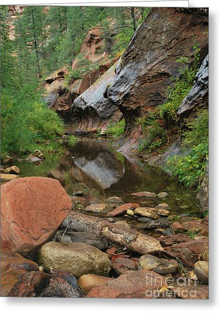 Oak Creek Greeting Cards - West Fork Trail River and Rock Vertical Greeting Card by Heather Kirk