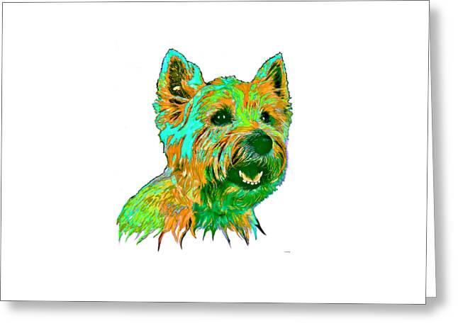 West Highland Terrier Greeting Card by Marlene Watson