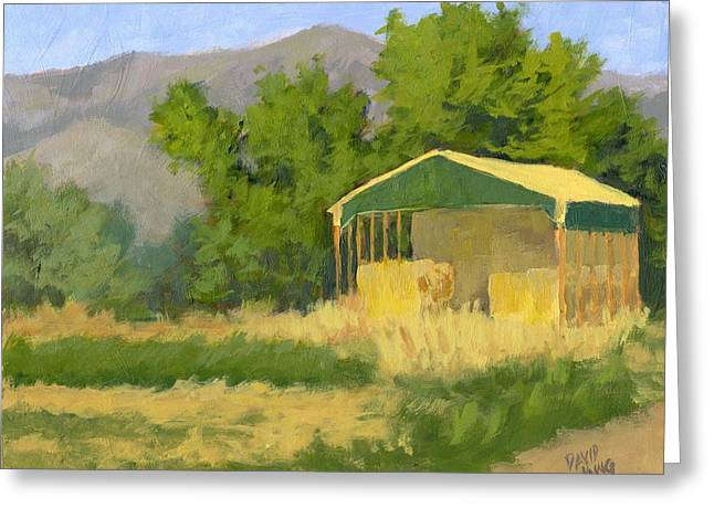 Sheds Greeting Cards - West Point Hay Shed Greeting Card by David King
