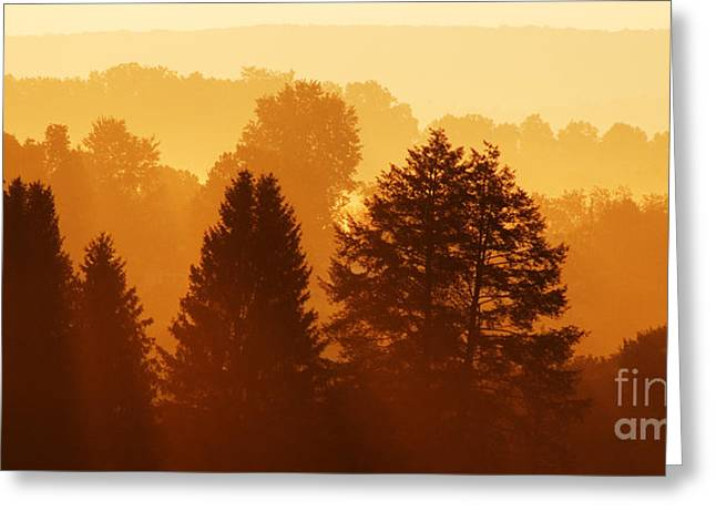 Allegheny Greeting Cards - West Virginia Misty Mountain Sunrise Greeting Card by Thomas R Fletcher