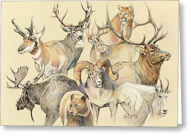 Tails Paintings Greeting Cards - Western heritage Greeting Card by Steve Spencer