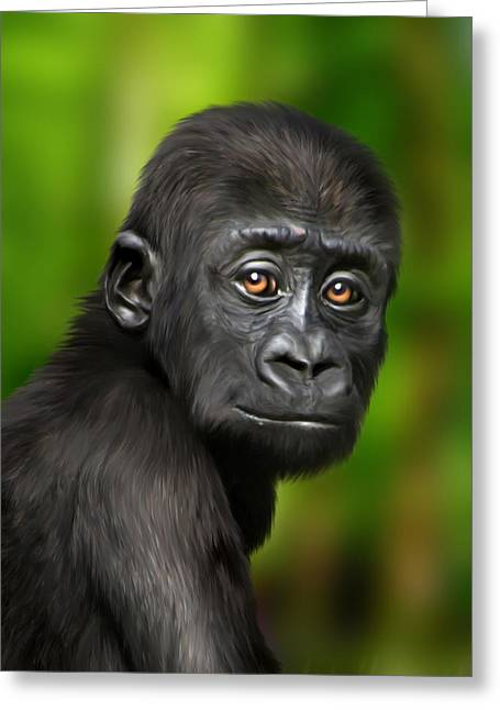 Ape. Great Ape Greeting Cards - Western Lowland Gorilla Baby Greeting Card by Julie L Hoddinott