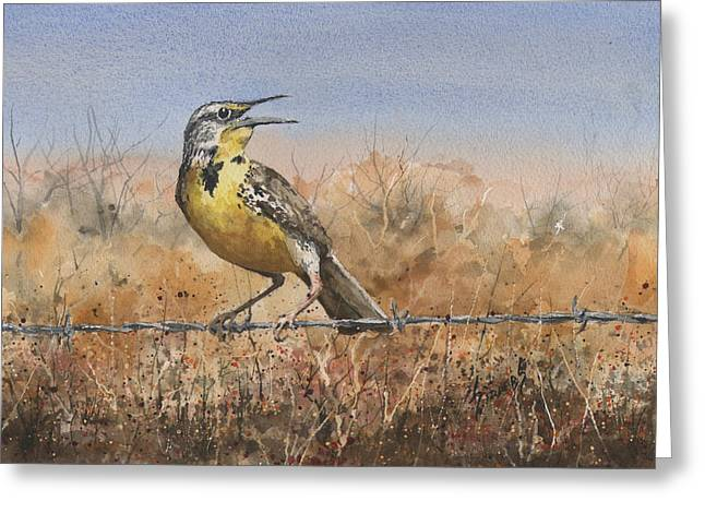Sam Sidders Greeting Cards - Western Meadowlark Greeting Card by Sam Sidders
