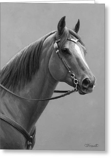 Western Quarter Horse Black And White Greeting Card by Crista Forest