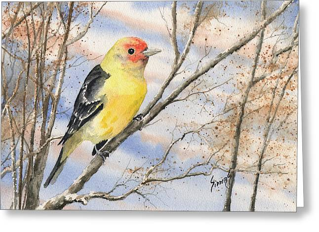Yellow Paintings Greeting Cards - Western Tanager Greeting Card by Sam Sidders
