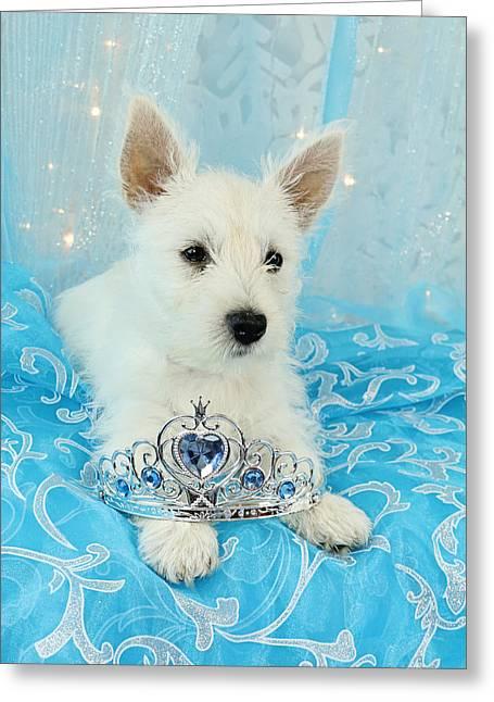Princes Greeting Cards - Westie Princess Greeting Card by Amanda Stadther