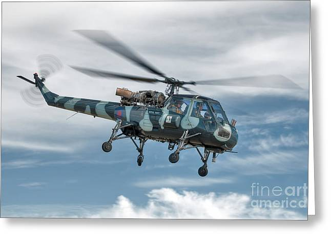 Anti Greeting Cards - Westland Wasp Greeting Card by Steve H Clark Photography