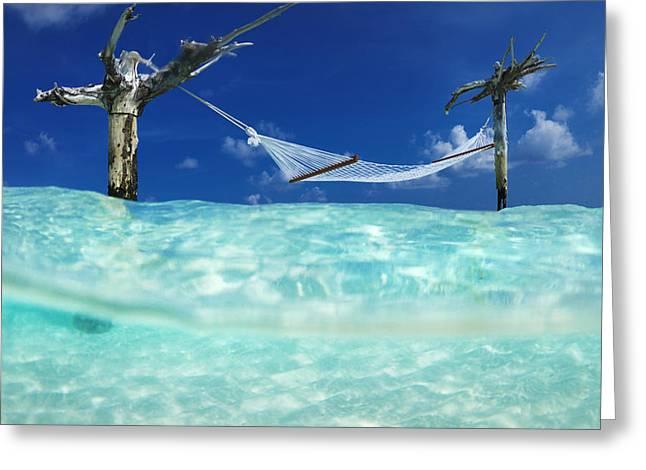 Beach House Greeting Cards - Wet Hammock Greeting Card by Sean Davey