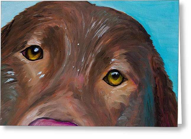 Chocolate Lab Greeting Cards - Wet Head Greeting Card by Roger Wedegis