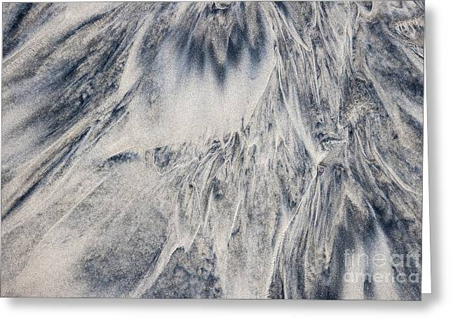 Dark Gray Greeting Cards - Wet sand abstract III Greeting Card by Elena Elisseeva