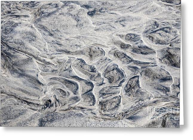 Dark Gray Greeting Cards - Wet sand abstract IV Greeting Card by Elena Elisseeva