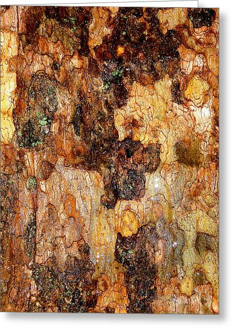 Wet Tree Bark 1 Greeting Card by Beth Akerman