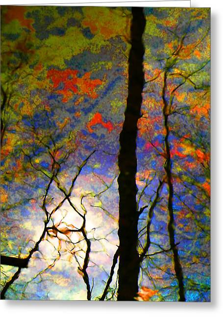 Fall Trees Greeting Cards - Wetland Reflections 48 Playful Greeting Card by Mary Bedy