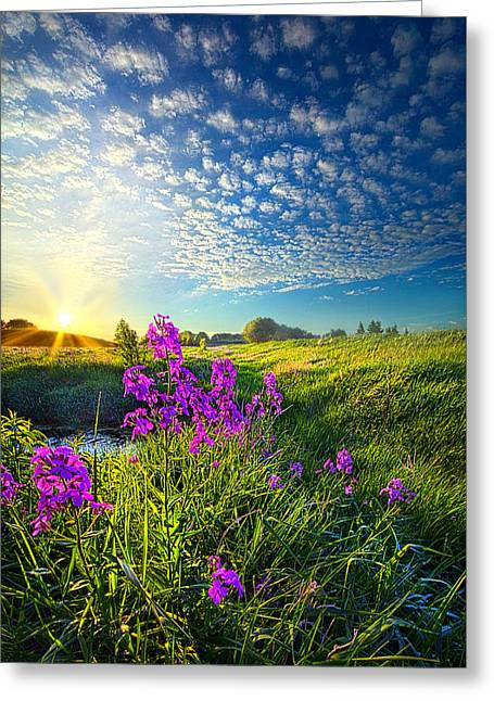 Life Line Greeting Cards - Weve Been Long Together Greeting Card by Phil Koch