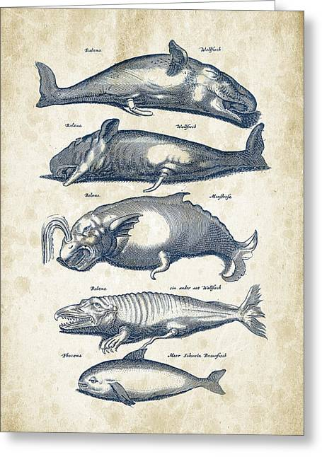 Ocean Mammals Digital Art Greeting Cards - Whale Historiae Naturalis 08 - 1657 - 41 Greeting Card by Aged Pixel