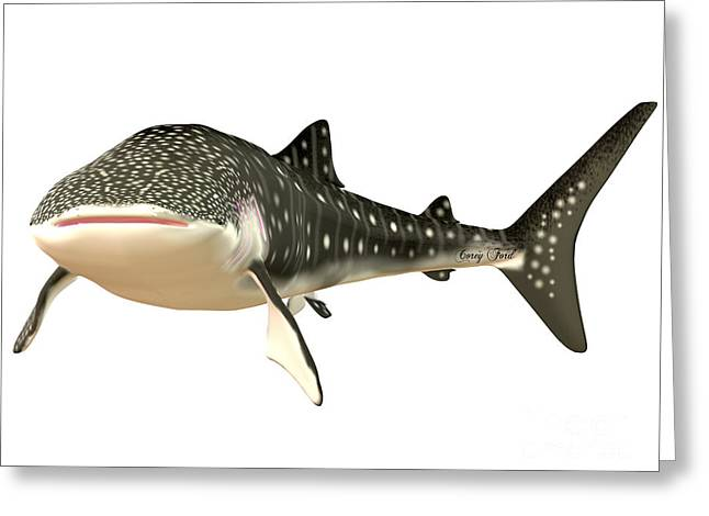 Sea Life Digital Art Greeting Cards - Whale Shark Profile Greeting Card by Corey Ford